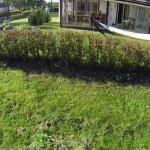 vlcsnap-2014-09-07-10h46m49s148